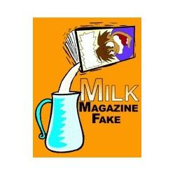 Absorbing News / Milk Magazine