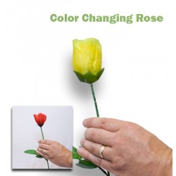 Color Changing Utility Rose...