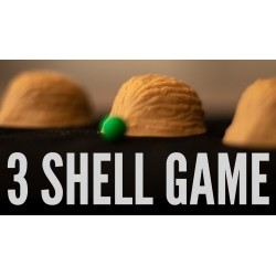 The 3 Shell Game