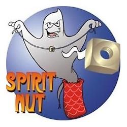 Spirit Nut Brass magic trick