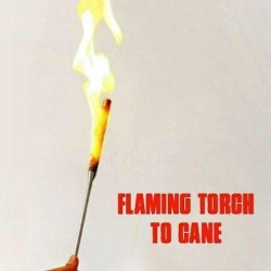 Flaming Torch for Appearing...