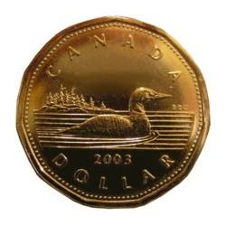 Split Coin Loonie