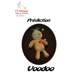 Prédiction Voodoo